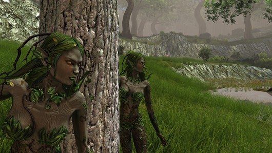 Dungeons and Dragons Online - dryads