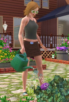 The Sims 3, also known as roleplaying solitaire.