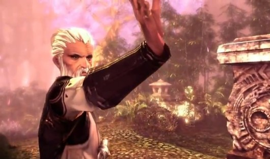 Blade &amp; Soul opens Western website, debuts trailer