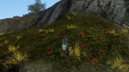 ArcheAge flagging system, piracy options explained