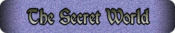 The Secret World banner