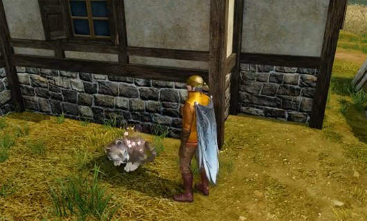 ArcheAge's pet system turns cute baby wolves into fearsome battle wargs