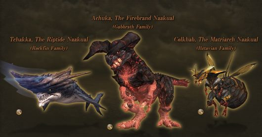 Final Fantasy XI: Seekers of Adoulin's Naakuals
