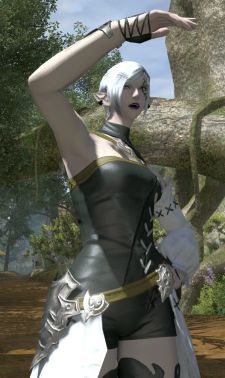 ffxiv moglog afterevent 1 epl 221 Across the country for Final Fantasy XIV