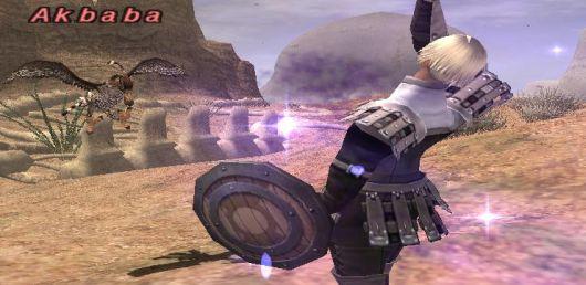 Screenshot -- Final Fantasy XI