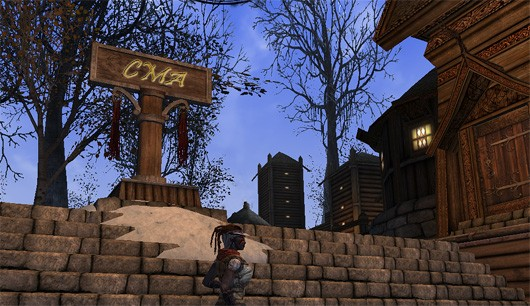 Choose My Adventure  Framing my first foray in Darkfall