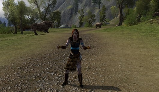LotRO Update 11 dev diaries feature epic story, mounted combat 20