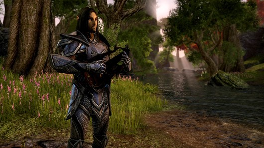 ZeniMax views TESO as more multiplayer Elder Scrolls than MMO