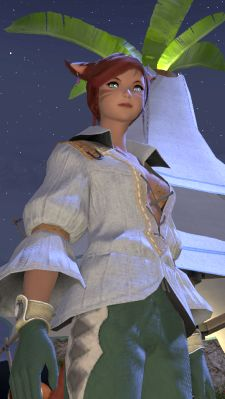 Final Fantasy XIV caters rather well to both.