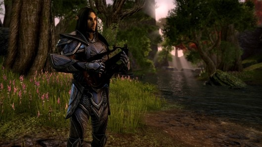 The Elder Scrolls Online will be subscriptionbased