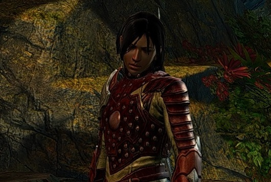Flameseeker Chronicles The Guild Wars 2 expansion blues