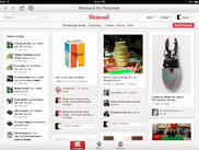 Pinboard for Pinterest on the iPad