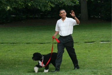 Barack Obama with his dog Bo