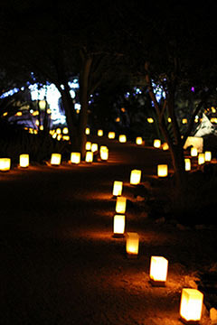 luminaries christmas