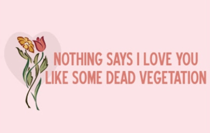 nothing says I love you like some dead vegetation