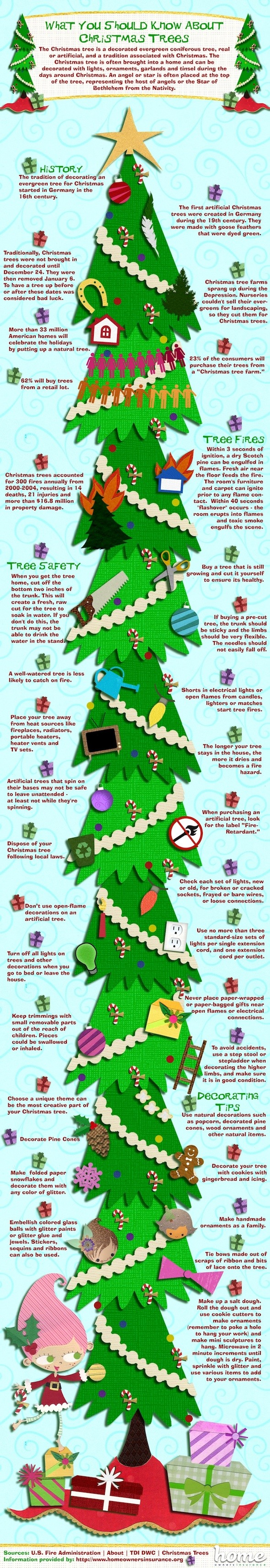 Christmas Trees Facts