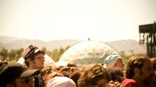 Coachella Music Festival: A Beginner's Guide to Surviving the Crowds, the Heat, and the Spectacle