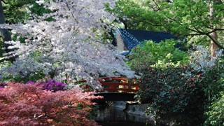 National Public Gardens Day: 10 Under-The-Radar Gardens To Visit This Mother's Day (PHOTOS)