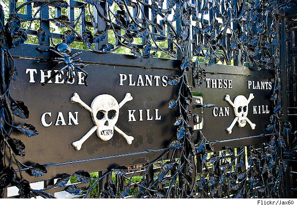 weird real estate facts poison garden