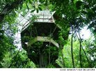 Costa Rica's Finca Bellavista Treehouse Community Is 100 Percent Sustainable (Off the Grid)