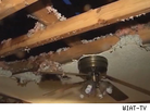 Homeowner Clint Thornton's Storm-Damaged Ceiling Collapses During TV Interview