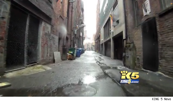 Seattle alley's property value