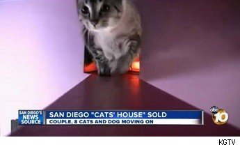 http://www.10news.com/news/san-diego-cats-house-sold-071713