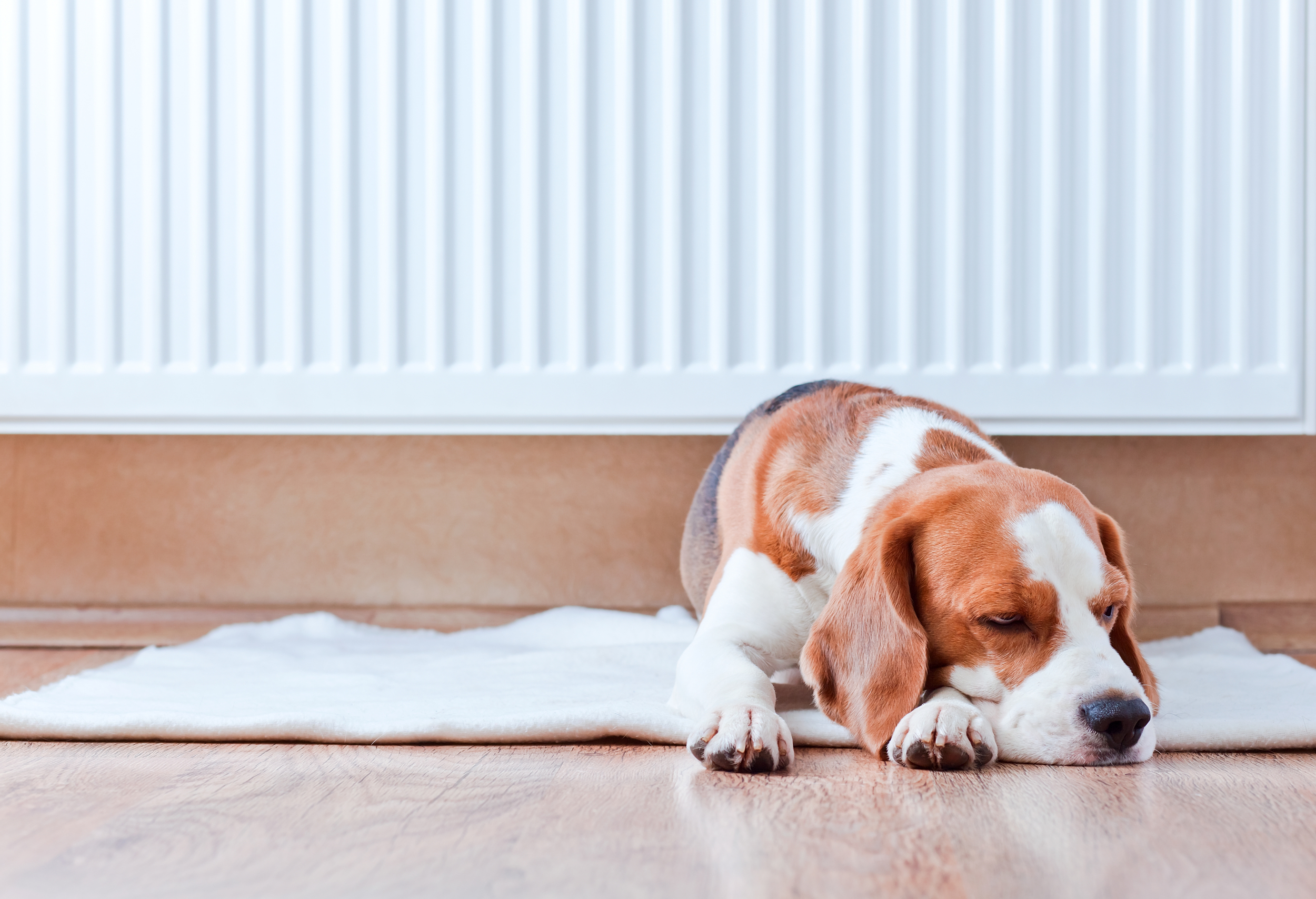 10 ways to keep your house warm for less - AOL Money UK