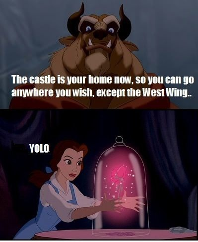 Quotes From Beauty And The Beast About The Rose Disney Memes Do It Bet...