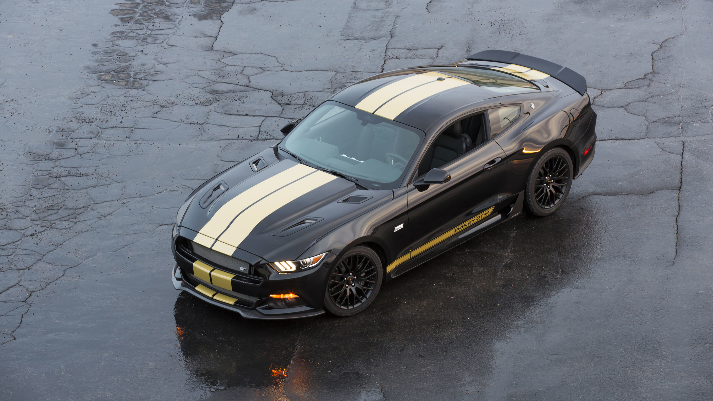 Thread shelby american hertz launch the 2016 50th anniversary edition ford mustang shelby gt h