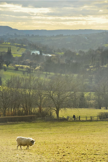 Which young singer loves the Gloucestershire countryside?