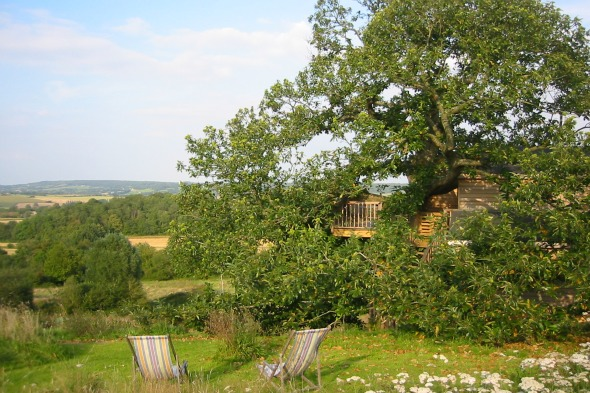 &lt;b&gt;Twitter in a Treehouse&lt;/b&gt;