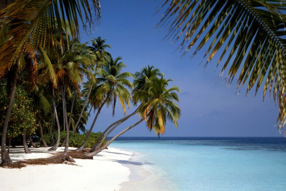 <b>The Maldives</b>