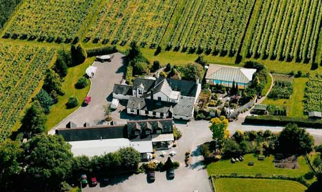 Stay on a vineyard and learn to cook at Llanerch Vineyard, Cardiff