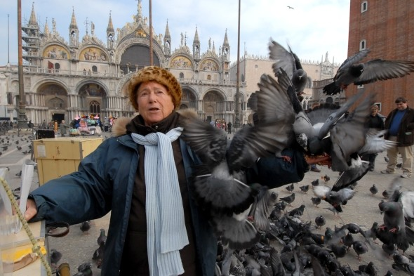 Don't feed the pigeons in Venice
