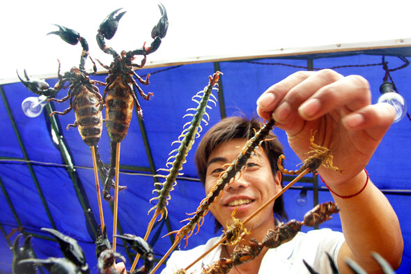 Centipede and scorpions, China