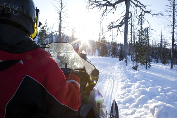 Pick up speed on a snowmobiling tour