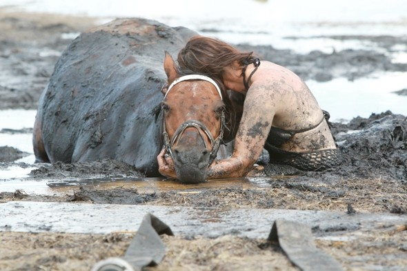 Beach panic as race against tide to save horse stuck in mud