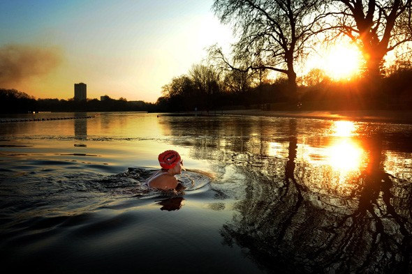 Brave swimmer, Hyde Park, London
