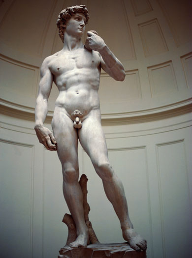 Michaelangelo's David, Florence, Italy