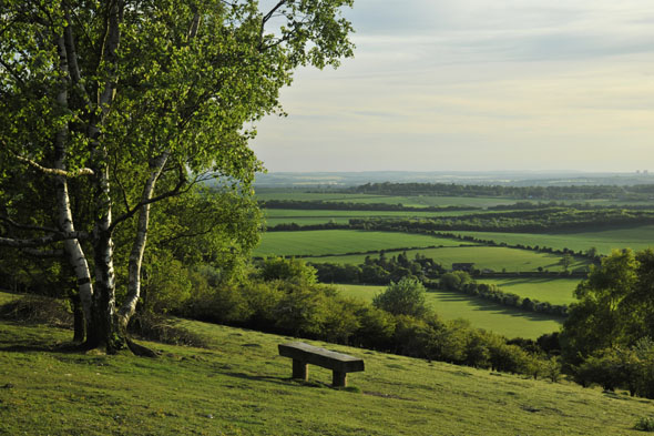 Which murder mysteries are filmed in these beautiful Oxfordshire hills?