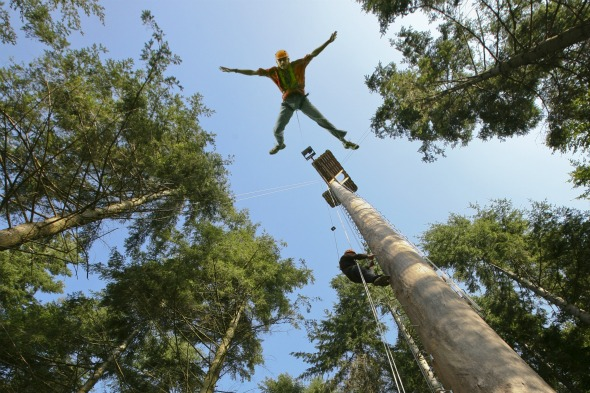 Powerfan Plummet, Tree Top Adventure