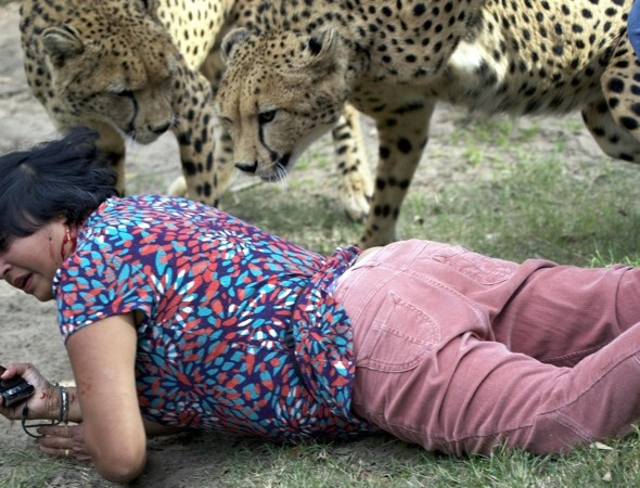 Woman mauled by cheetahs in South African game park