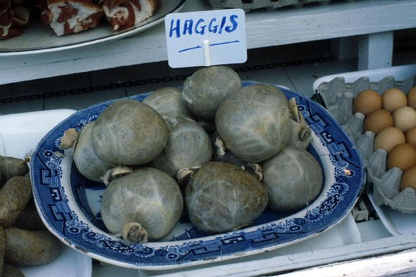 Haggis - Scotland