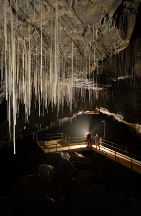 Go beneath the Yorkshire Dales and experience caving