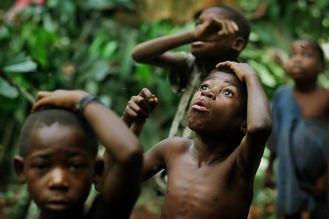 Congo Basin, Central African Republic