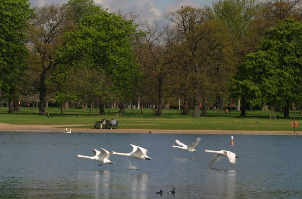 Kensington Gardens, Hyde Park, London
