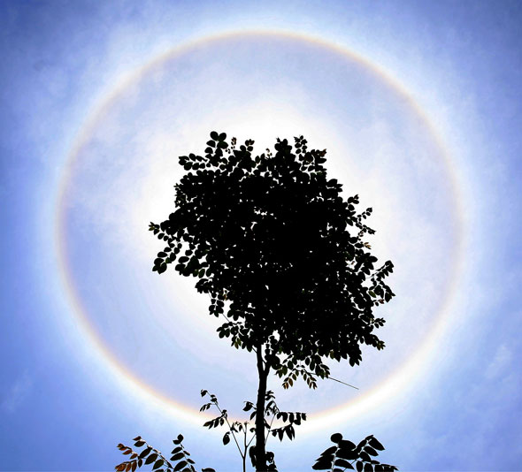 Picture of the day: Rare solar halo in China