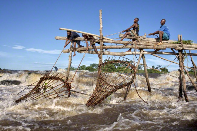 Fishermen checking their traps, Democratic Republic of Congo