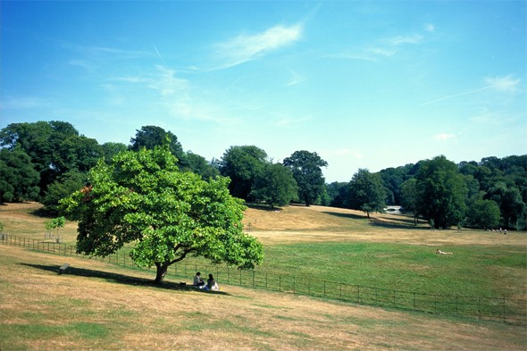 Discover a great open space that's fun for all at Hampstead Heath